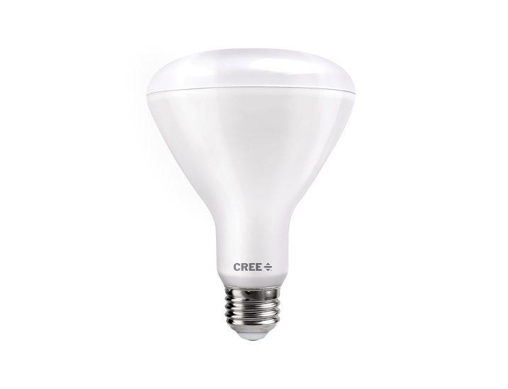 BR30 65W/100W Professional Series Bulb